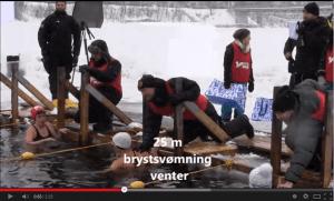 De Åbne Svenske Mesterskaber i Vinter-is-svømning i vandet