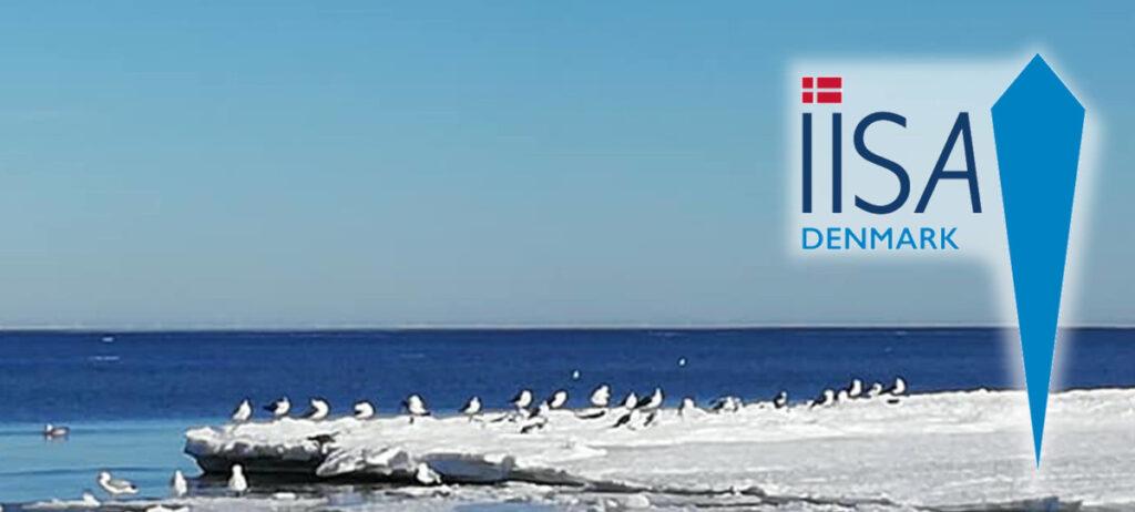 IISA nyt dansk issvømmerforbund